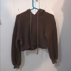 Brown Teddy Bear crop sweater